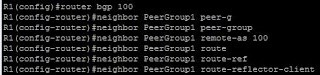 BGP peer-groups
